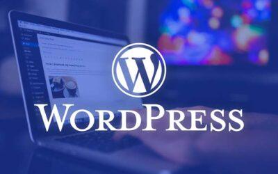 What make WordPress become a popular CMS in Web Development?